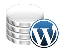 WPO (Web Performance Optimization) para WordPress - YouTube